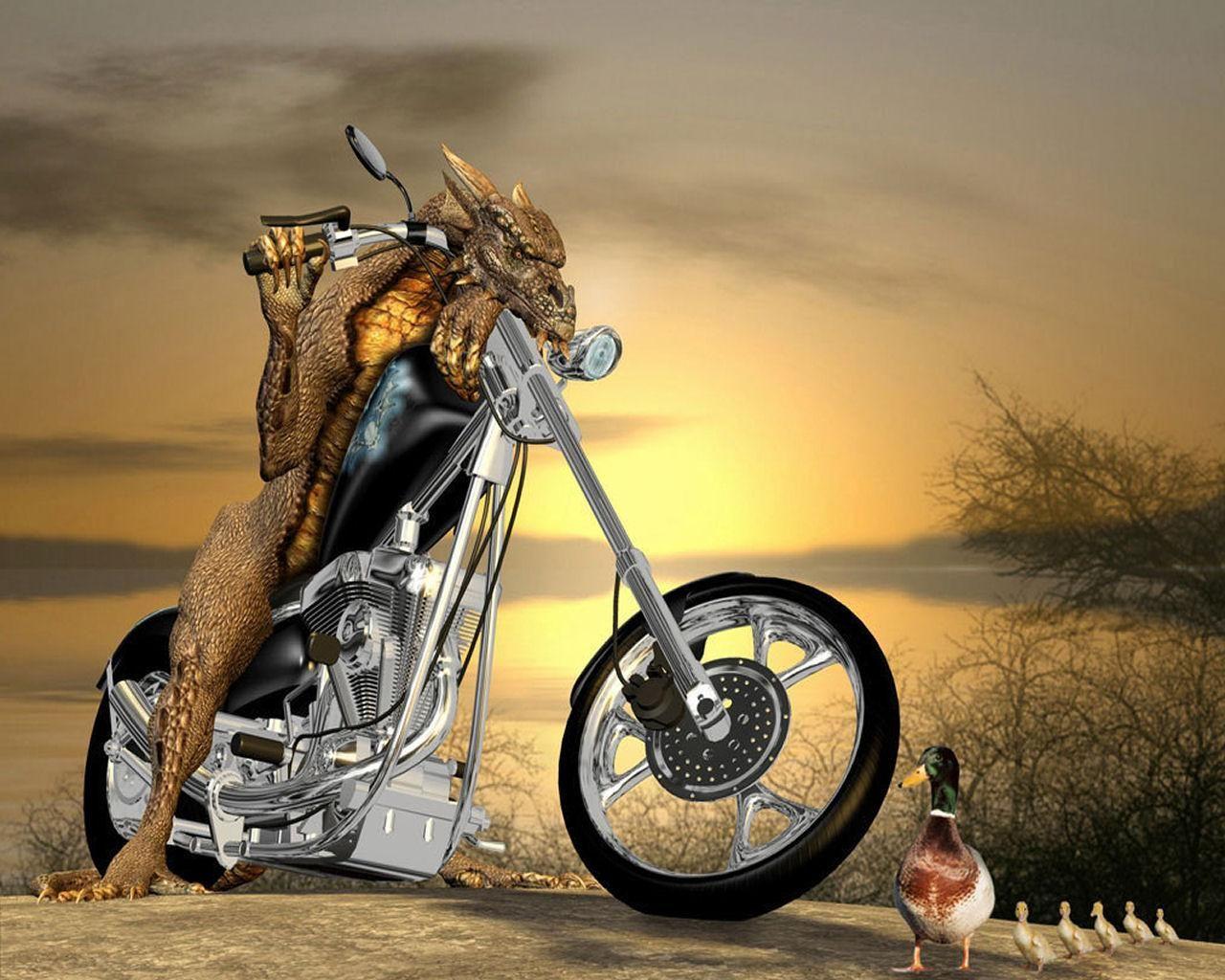 Funnydragonbike
